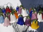 Glockenblumen_02